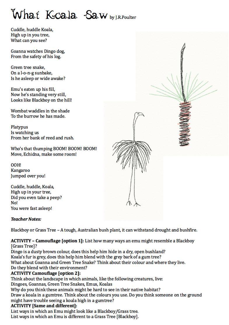 What Koala Saw by JR Poulter | Australian Children's Poetry